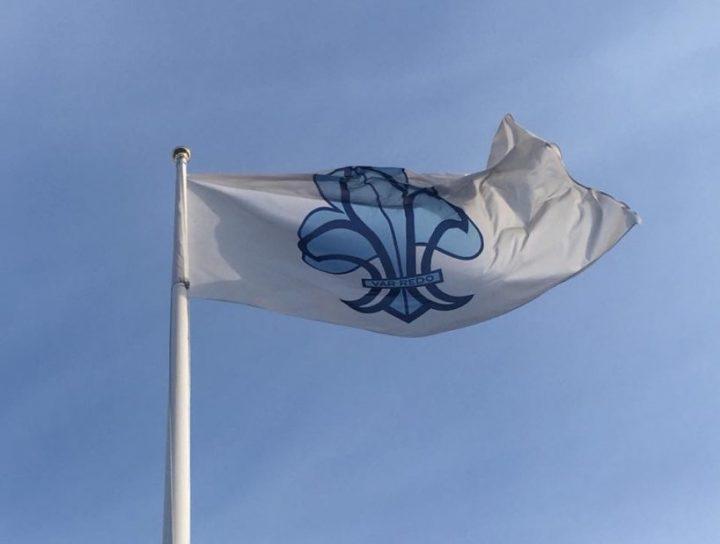 Scout flagga