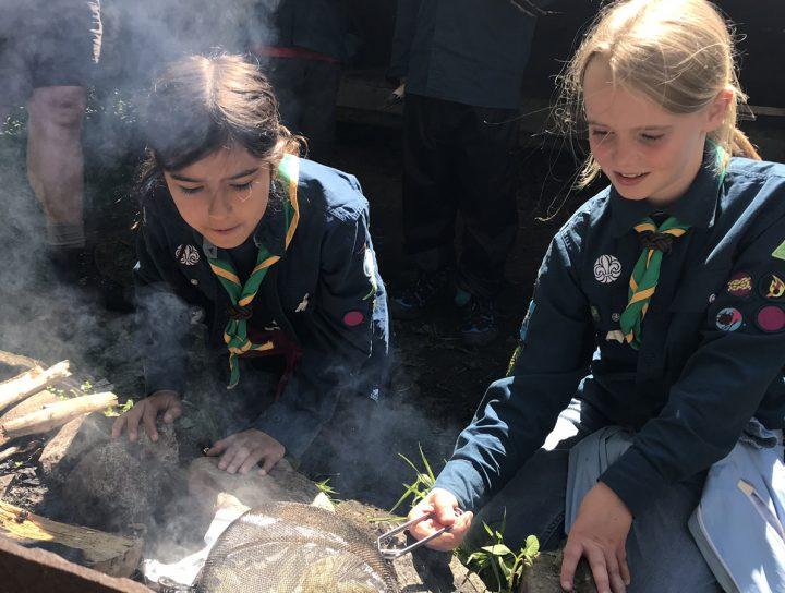 avdelningar djupadals scoutkår