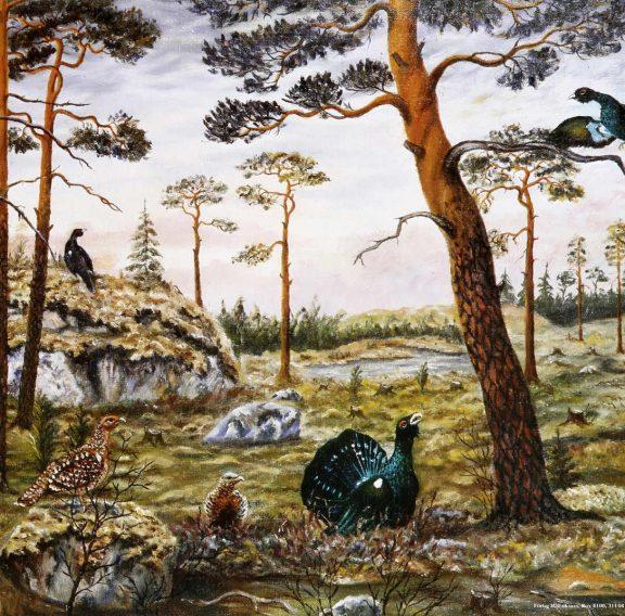 skogsfåglar